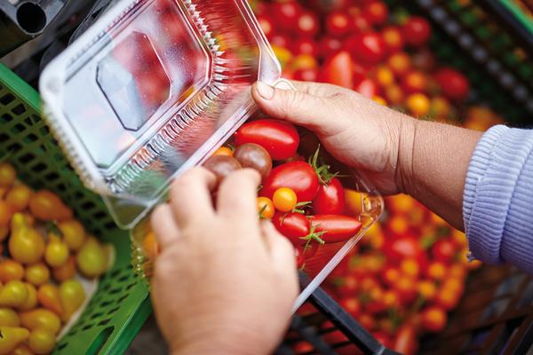 monempresarial-153-alimentaria-fruiteria