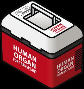 mon-empresarial-002-caixa-transplantament