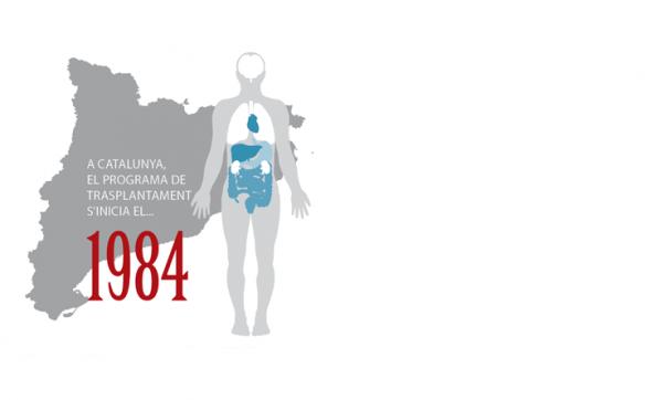 Inicis del mercat d'òrgans a Catalunya 2014