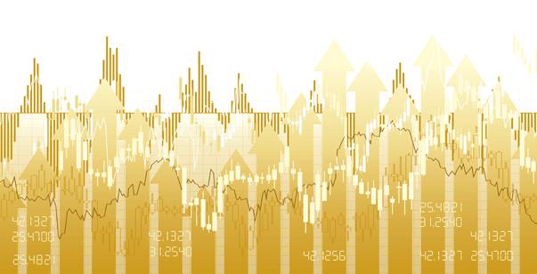Creixement Financer